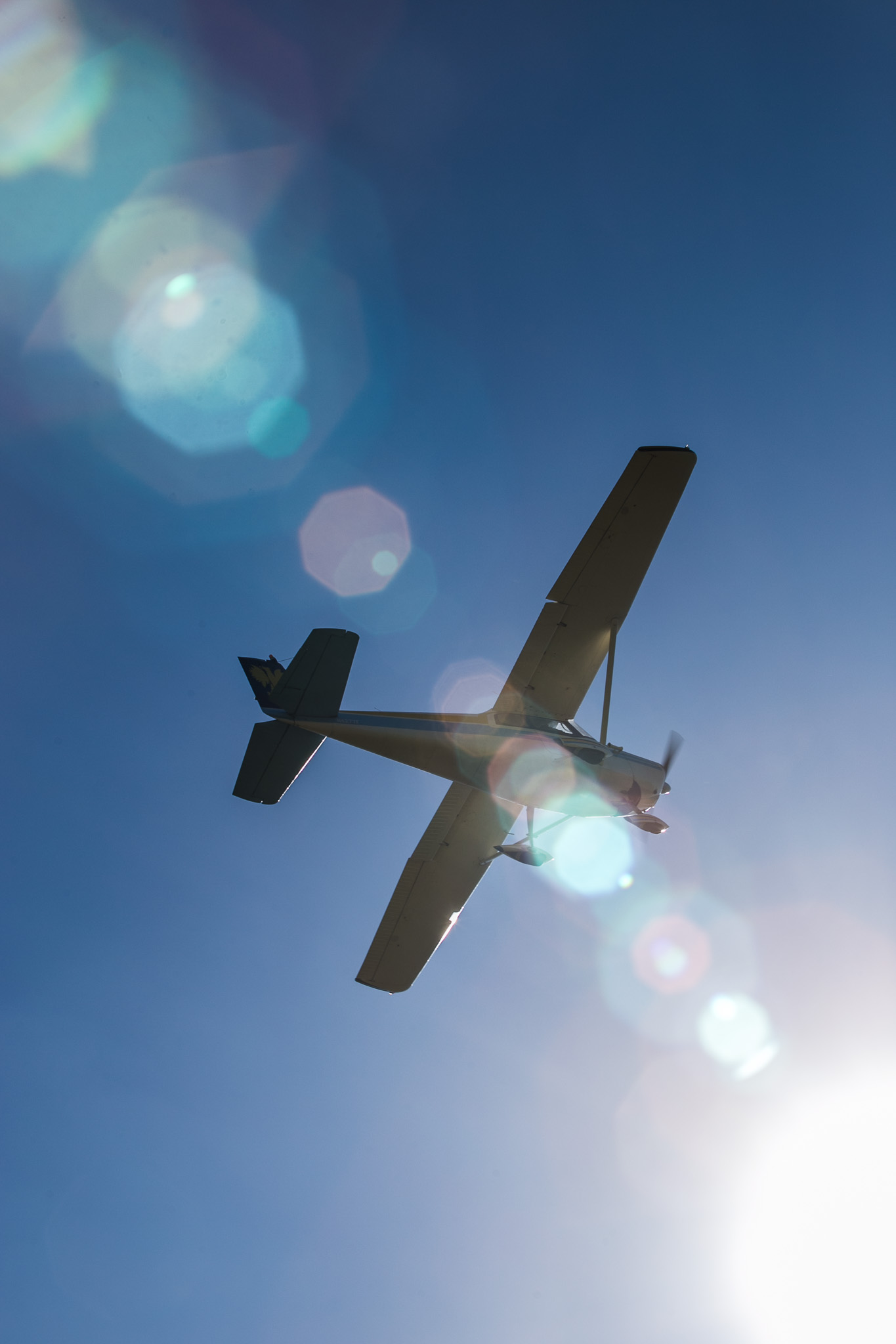 fbfly-in-7753