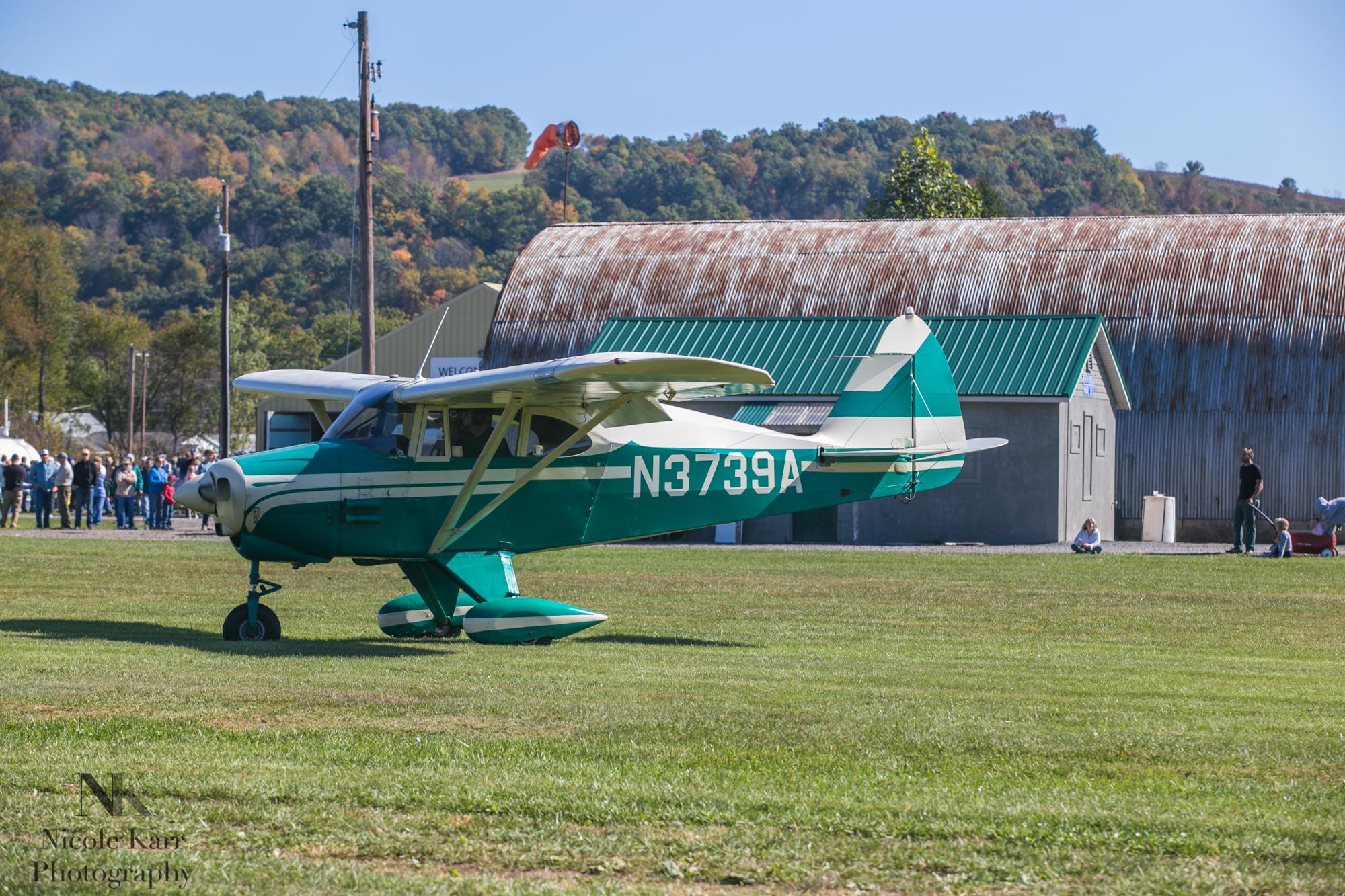 fly-in-7776