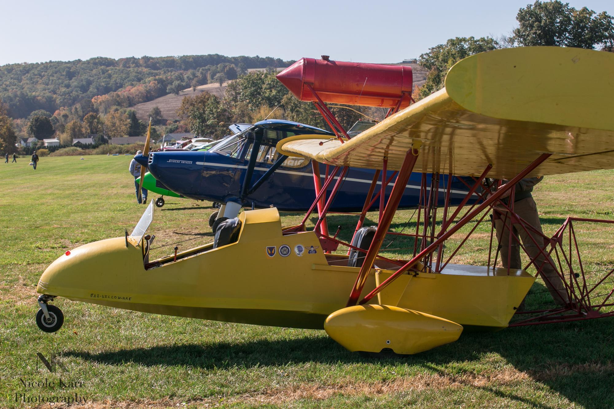 fly-in-7794