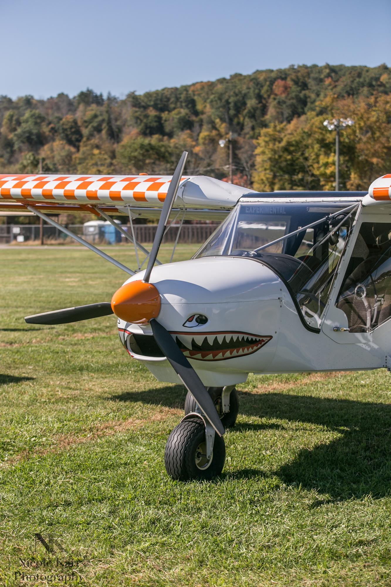 fly-in-7812